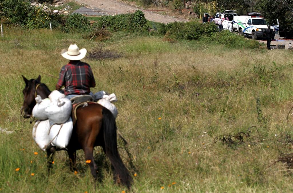 A man rides his horse as a team of forensic experts work after seven bodies were found in three abandoned vehicles on the way to Ocotillo, in Tonala, Mexico