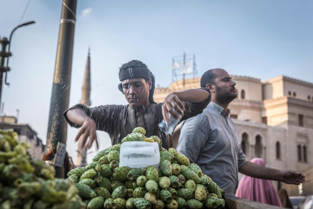 The easing of Egypt's inflation was due to a drop in household items including fruit and vegetables on the back of an increase in agricultural production.