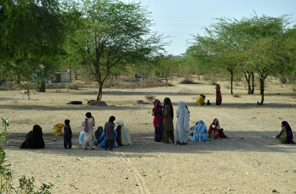 Pakistani villagers sit under trees on a hot summer day in Sindh province in May 2018