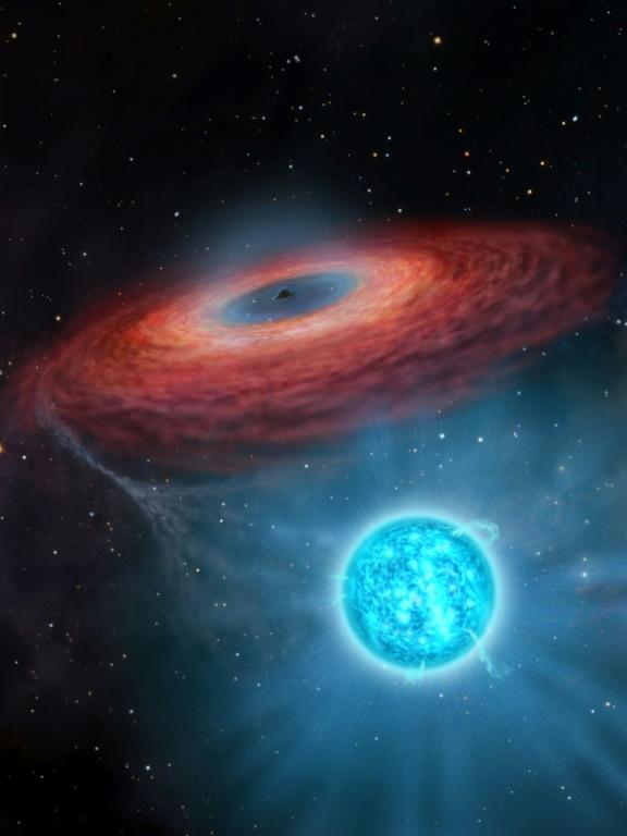 The black hole was discovered by an international team of scientists