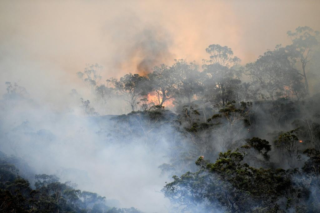 Six people have been killed and more than 700 houses destroyed in Australian bushfires this fire season