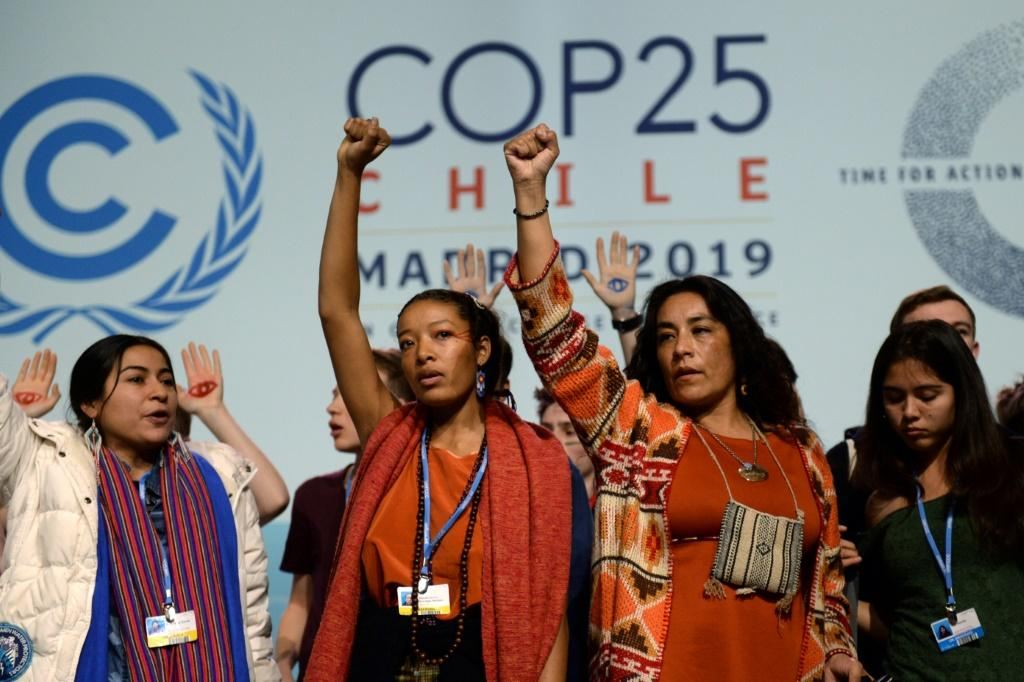 Dozens of youth activists from around the world stormed the plenary stage, demanding that delegates act now to cut emissions