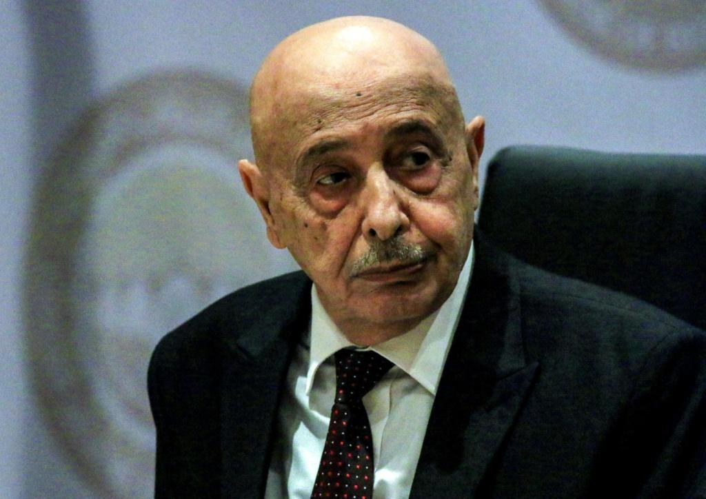 Libyan parliamentary speaker Aguila Saleh was visiting Cyprus amid tensions over Turkey's strategy of wading into Libya's civil war