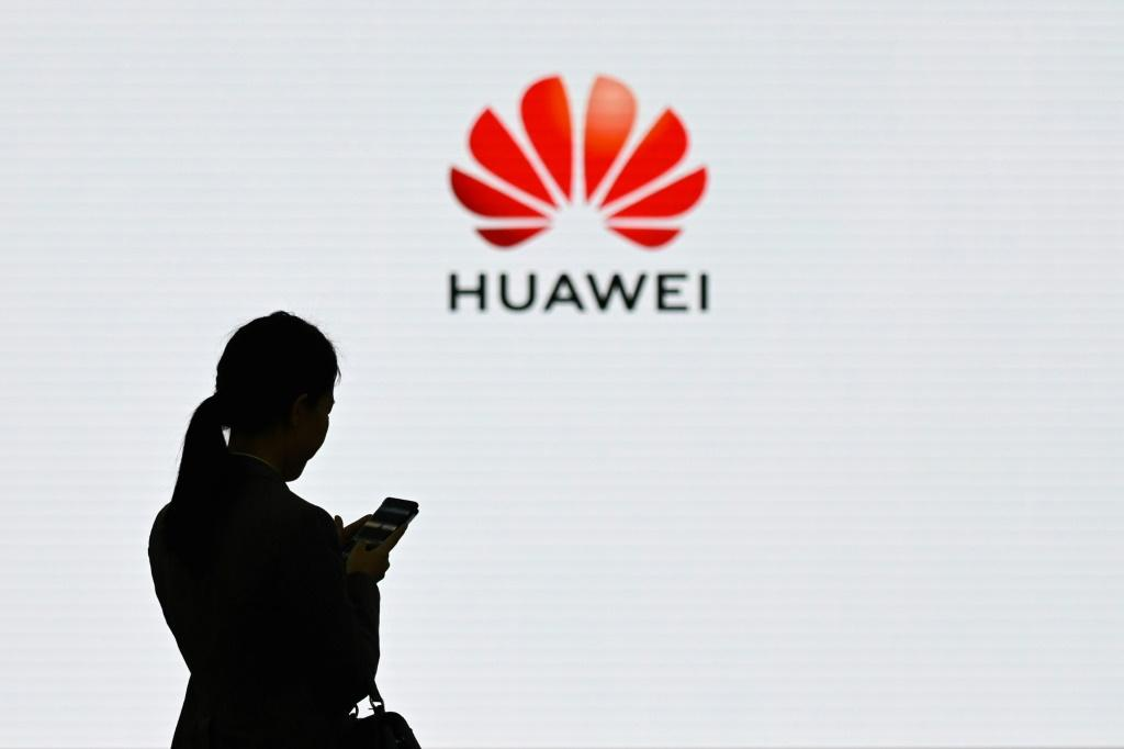 Huawei says it is facing a tough 2020 because of what it claims is a 'strategic and long-term' campaign against the company by the US government