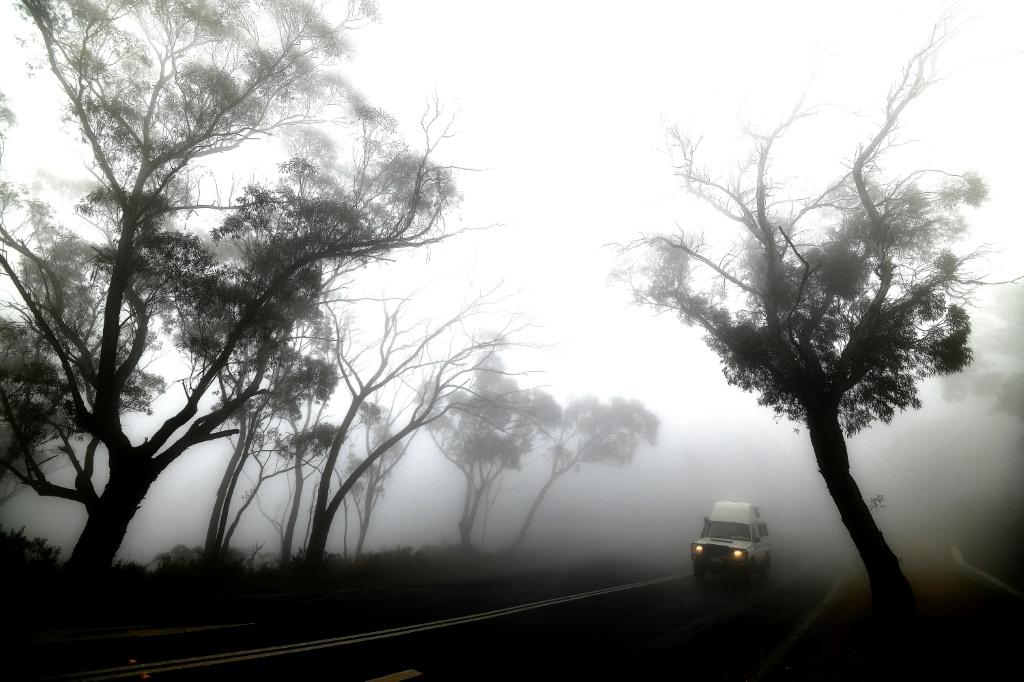 Smoke from bushfires - combined here with fog - has created huge problems for people across fire-hit areas