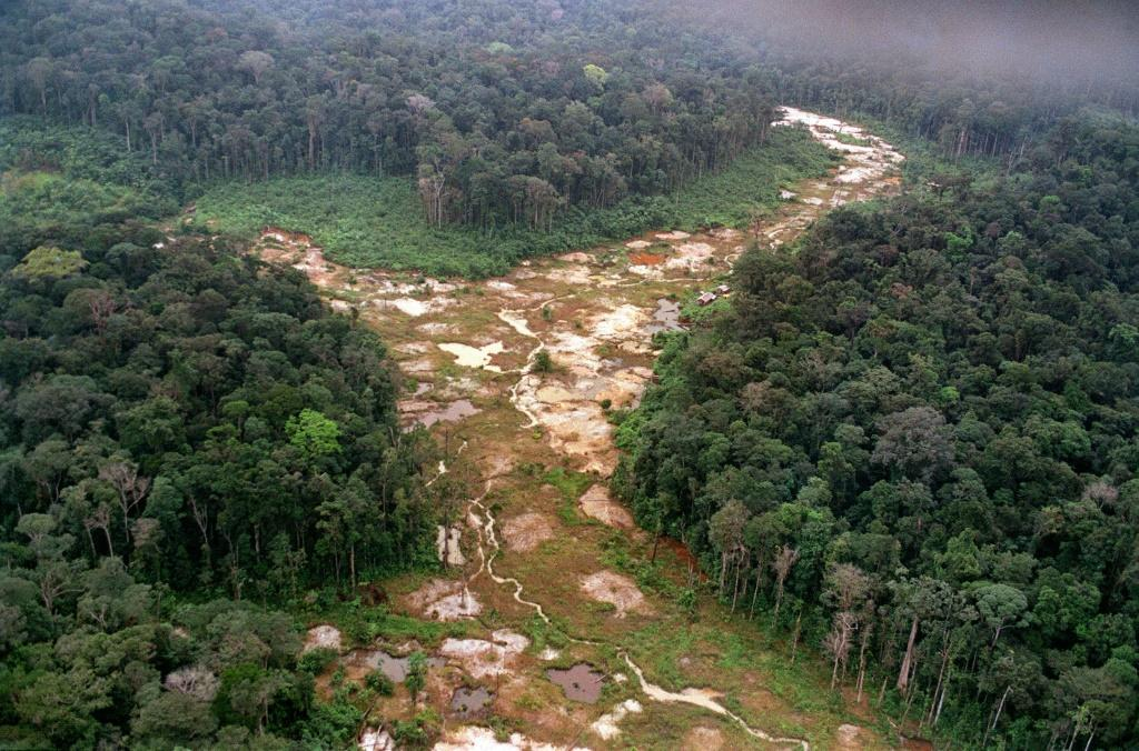 Aerial view of a patch of the Amazon rainforest deforested by gold mining in 1991