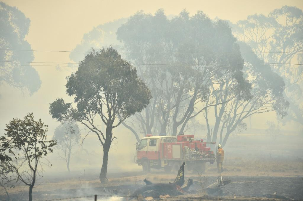 """Beleaguered volunteer firefighters who have fought the blazes day-in-day-out say they are """"over the moon"""" at the rain"""