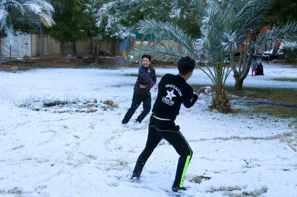 A snowball fight amid the palm trees -- young boys enjoy only the second snowfall in a century to carpet Baghdad and central Iraq