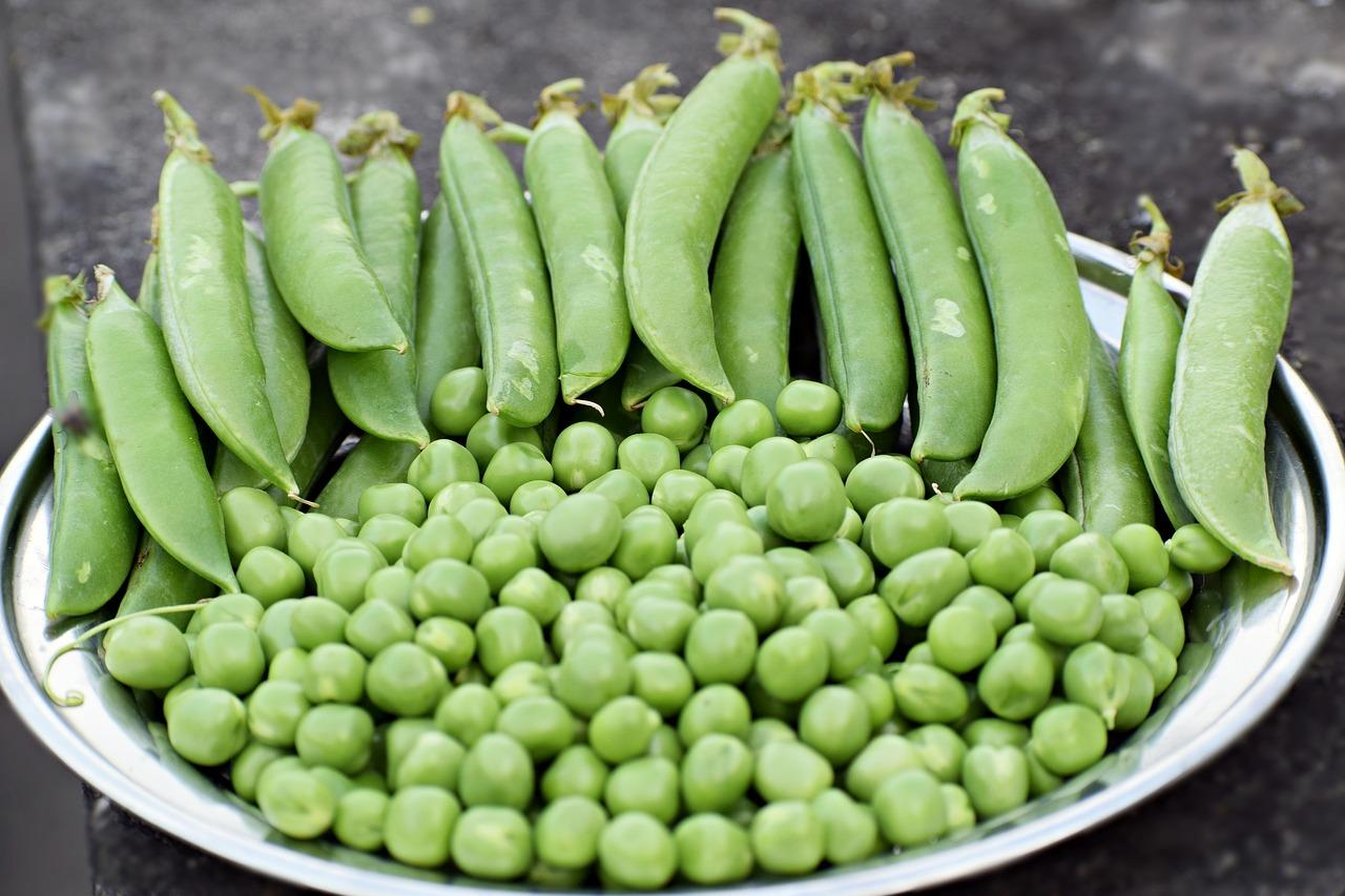 garden peas to fight blood pressure
