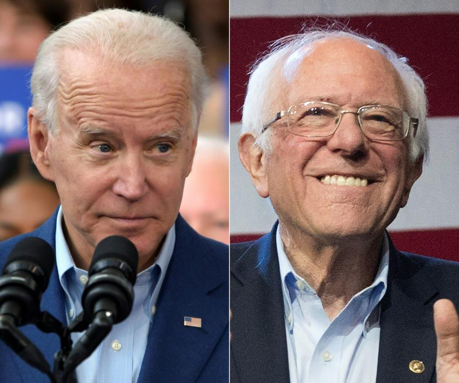 Joe Biden and Bernie Sanders are frontrunners in the race for the Democratic presidential nomination