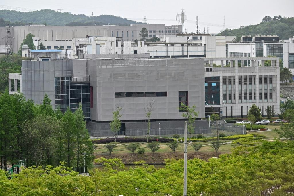 The existence of the lab has fuelled conspiracy theories that the germ spread from the Wuhan Institute of Virology, specifically its P4 laboratory