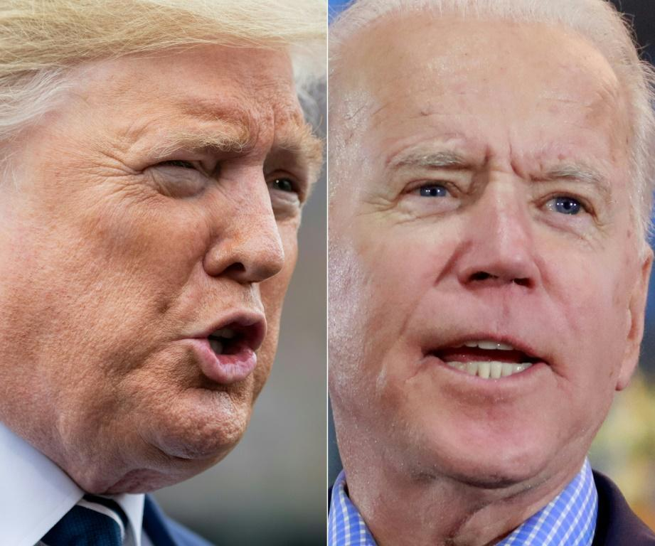 Democrat Joe Biden (R) is likely to face off against Republican Donald Trump in the November 2020 presidential election
