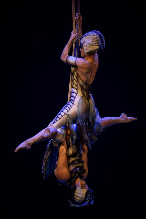 """Artists perform in the Cirque du Soleil's touring circus production """"Ovo"""" (""""Egg"""" in Portuguese), at the Mineirinho Gymnasium, in Belo Horizonte, Brazil in March 2019"""