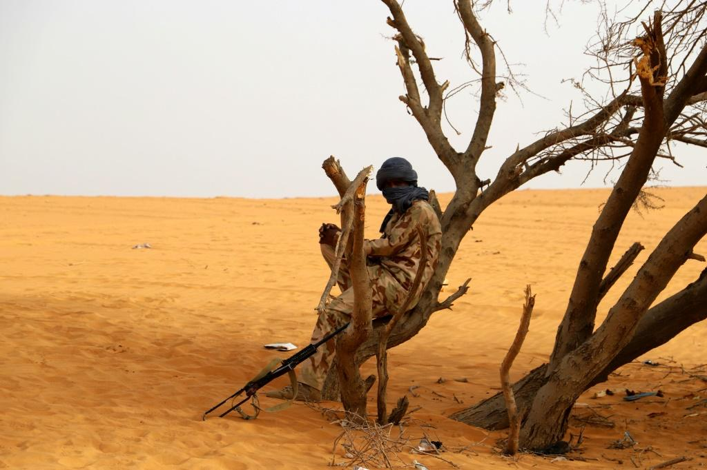 The Sahel is a huge, largely lawless expanse stretching overBurkina Faso, Chad, Mali, Mauritania and Niger, where drugs and arms flow through porous borders