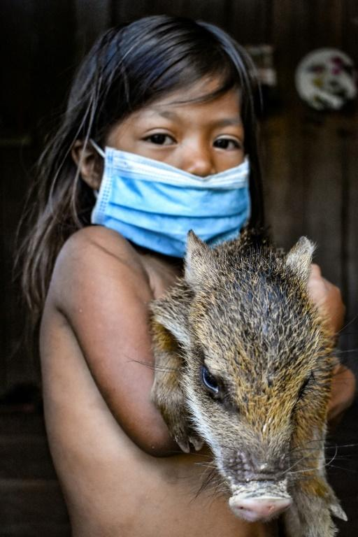 A Ticuna girl holding a wild boar in the village of El Progreso, Colombia