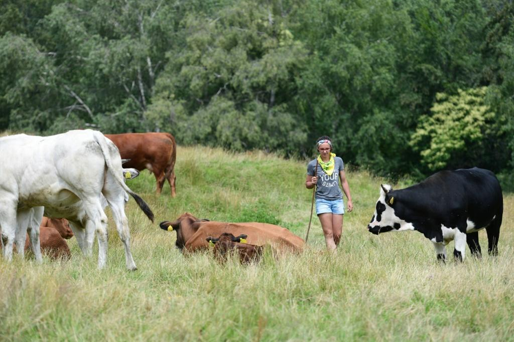 Women make up almost a third of the total of new entries to farming