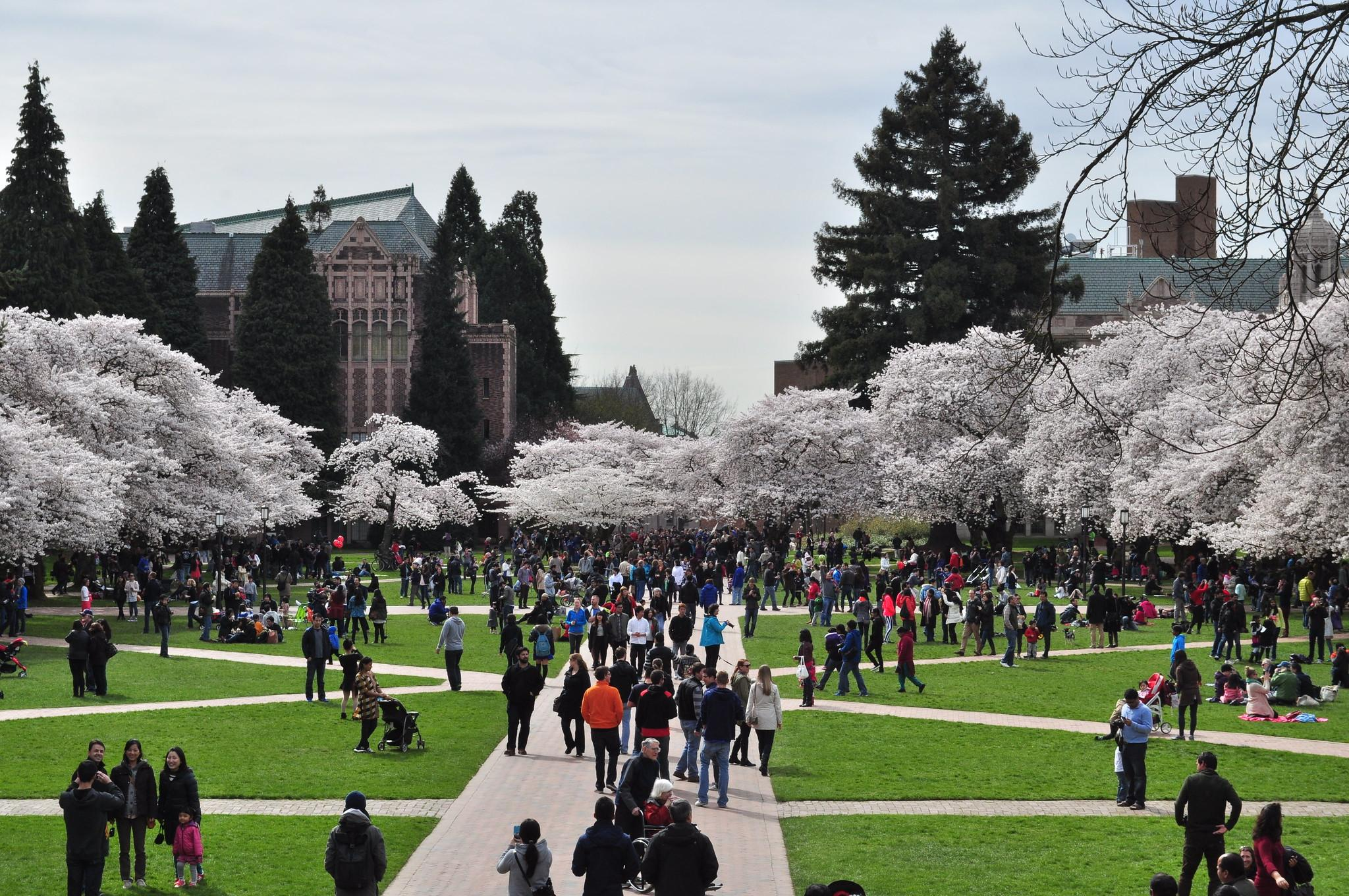 University Of Washington Students In Frat Houses Test Positive For Coronavirus