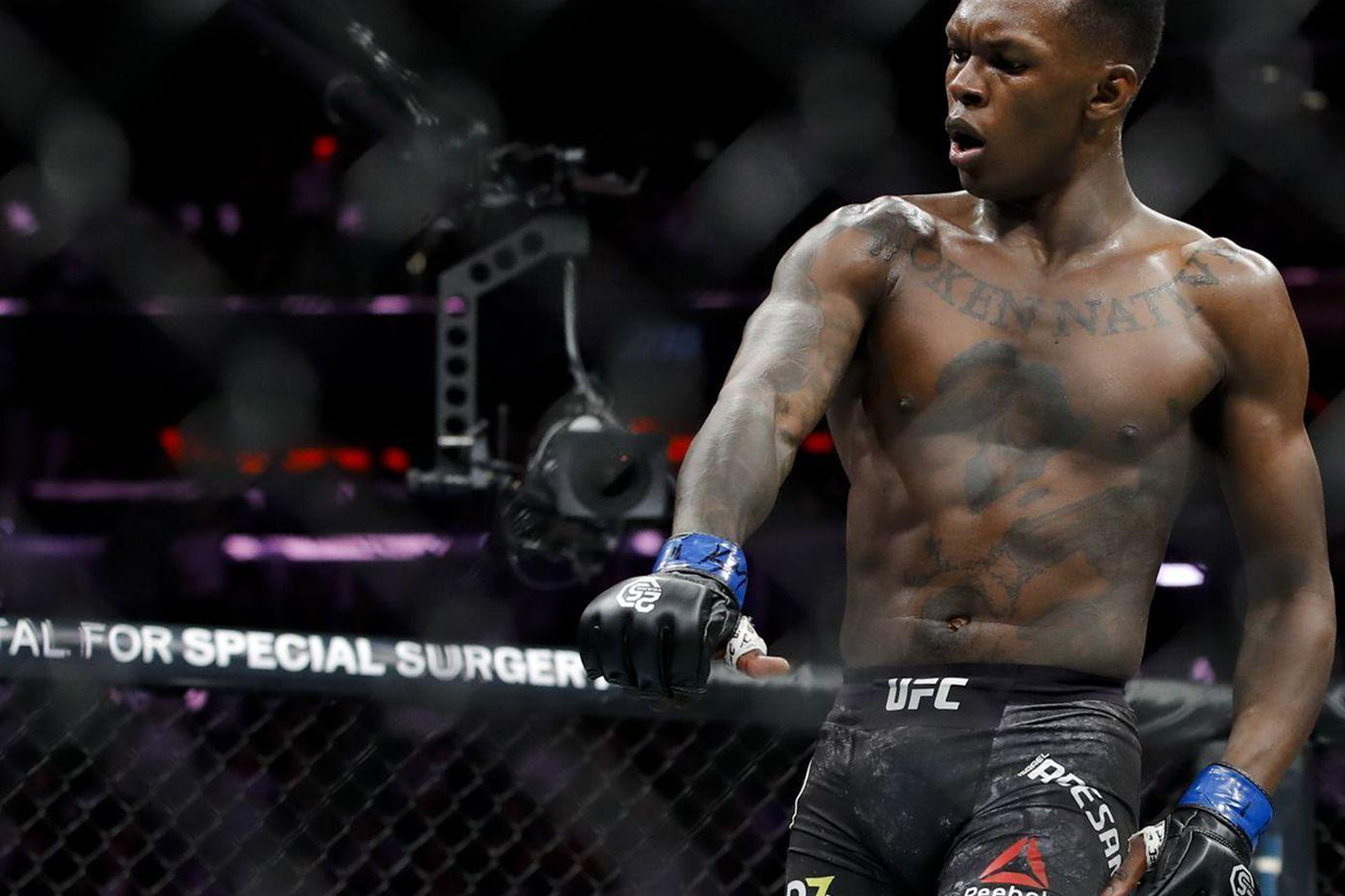 Israel Adesanya, current middleweight champion for UFC
