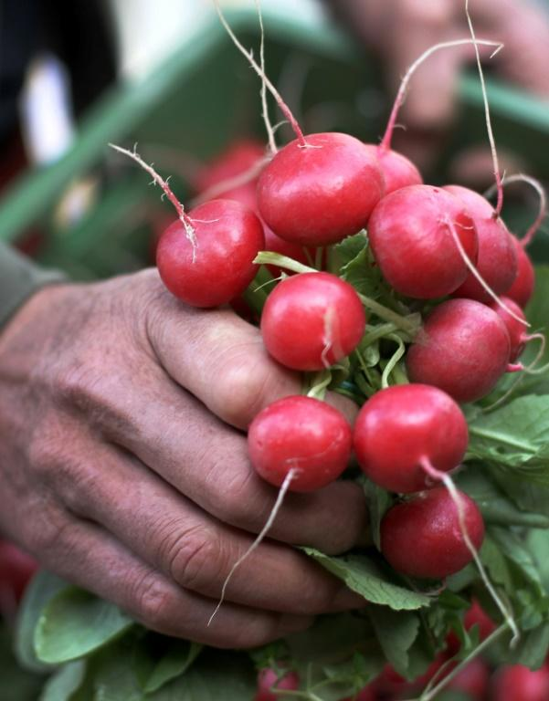 The humble radish is the perfect accompaniment to a glass of champagne, according to Didier Depond