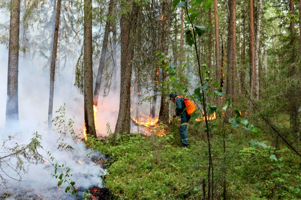 Russia said Wednesday it was battling blazes over 40,000 hectares