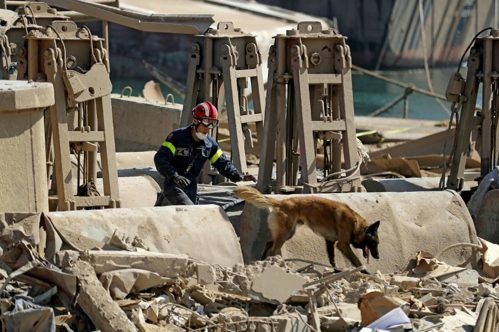 A French rescue worker leads a dog as they search for survivors at Beirut port