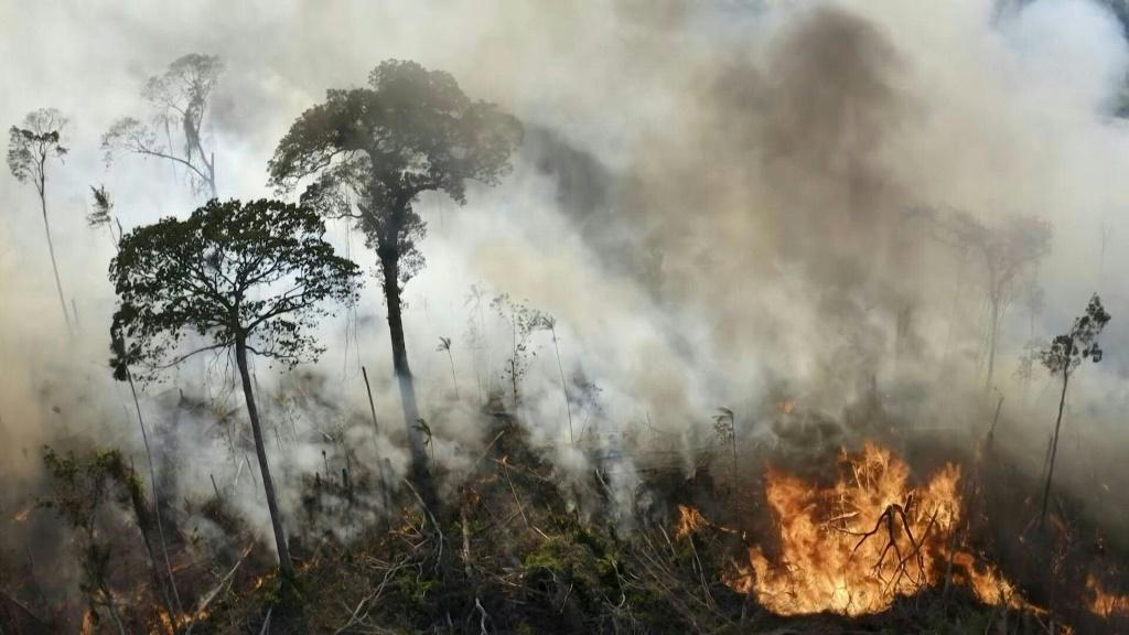 An illegal fire set by a farmer to clear his land spreads through the Amazon rainforest in Para state