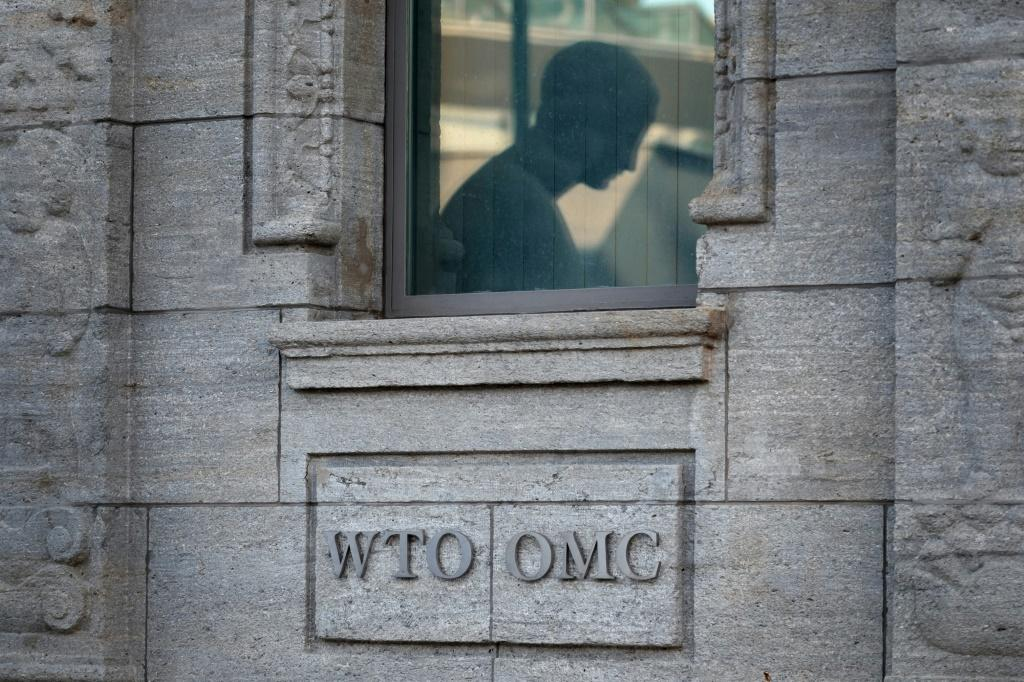 Some WTO watchers feel the trade organisation might be leaderless for the foreseeable future
