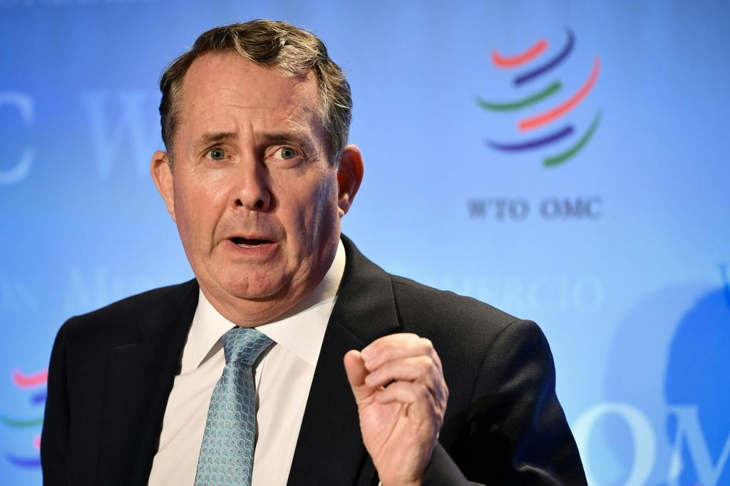 "Liam Fox, candidate to head the WTO, describe its selection process as ""somewhere between choosing a pope and the Eurovision Song Contest"