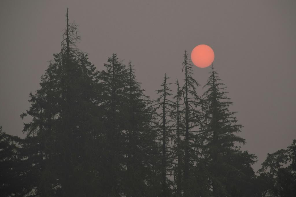 Smoke from the deadly US wildfires has been observed as far as 8000 kilometres away