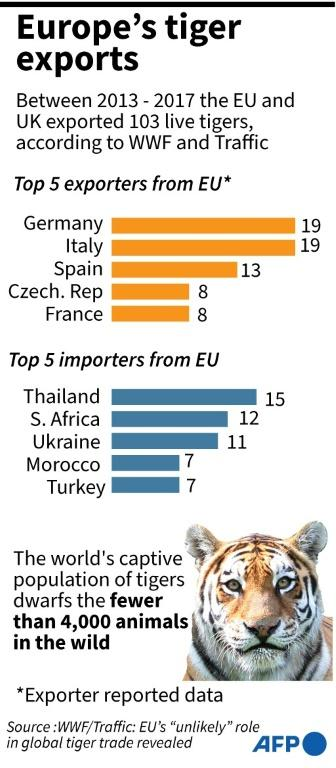 Chart showing documented tiger exports from European countries 2013 - 2017, according to data published by WWF and Traffic.