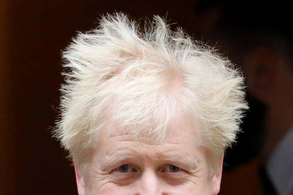Prime Minister Boris Johnson's Conservatives have a majority in the lower House of Commons