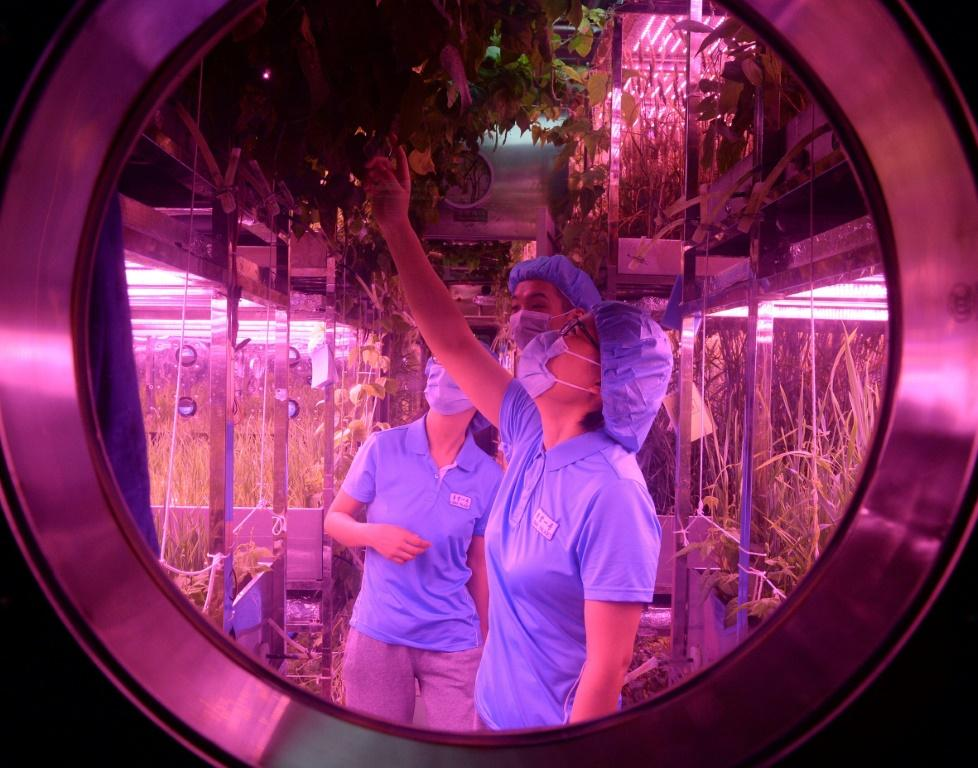 China has been carrying out experiments in a lab simulating a lunar-like environment in preparation for its long-term goal of putting humans on the moon