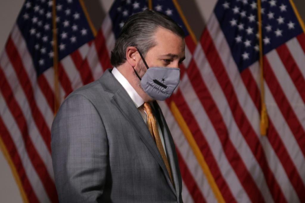 Republican Senator Ted Cruz (pictured November 2020) has asserted that 'allegations of fraud and irregularities in the 2020 election exceed any in our lifetimes'