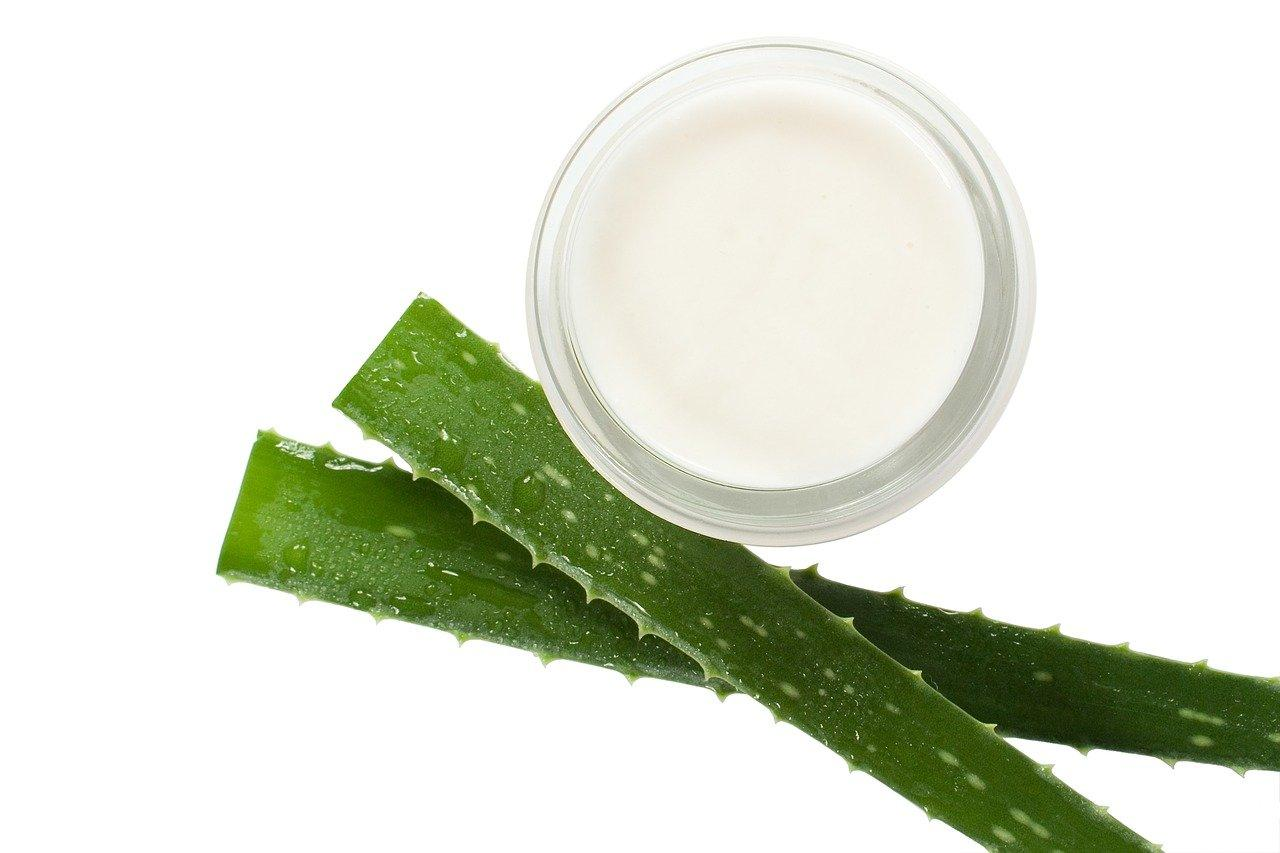 Aloe Cream for Skincare