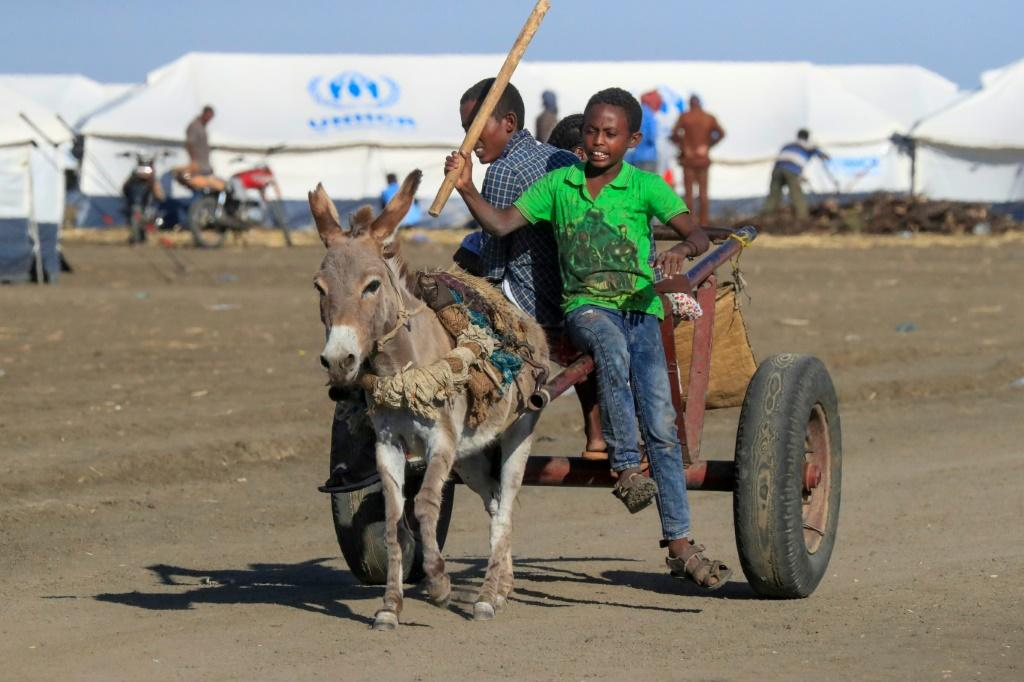 Thousands of Ethiopian refugees have fled the Tigray conflict and reached the Tenedba camp in Mafaza, eastern Sudan