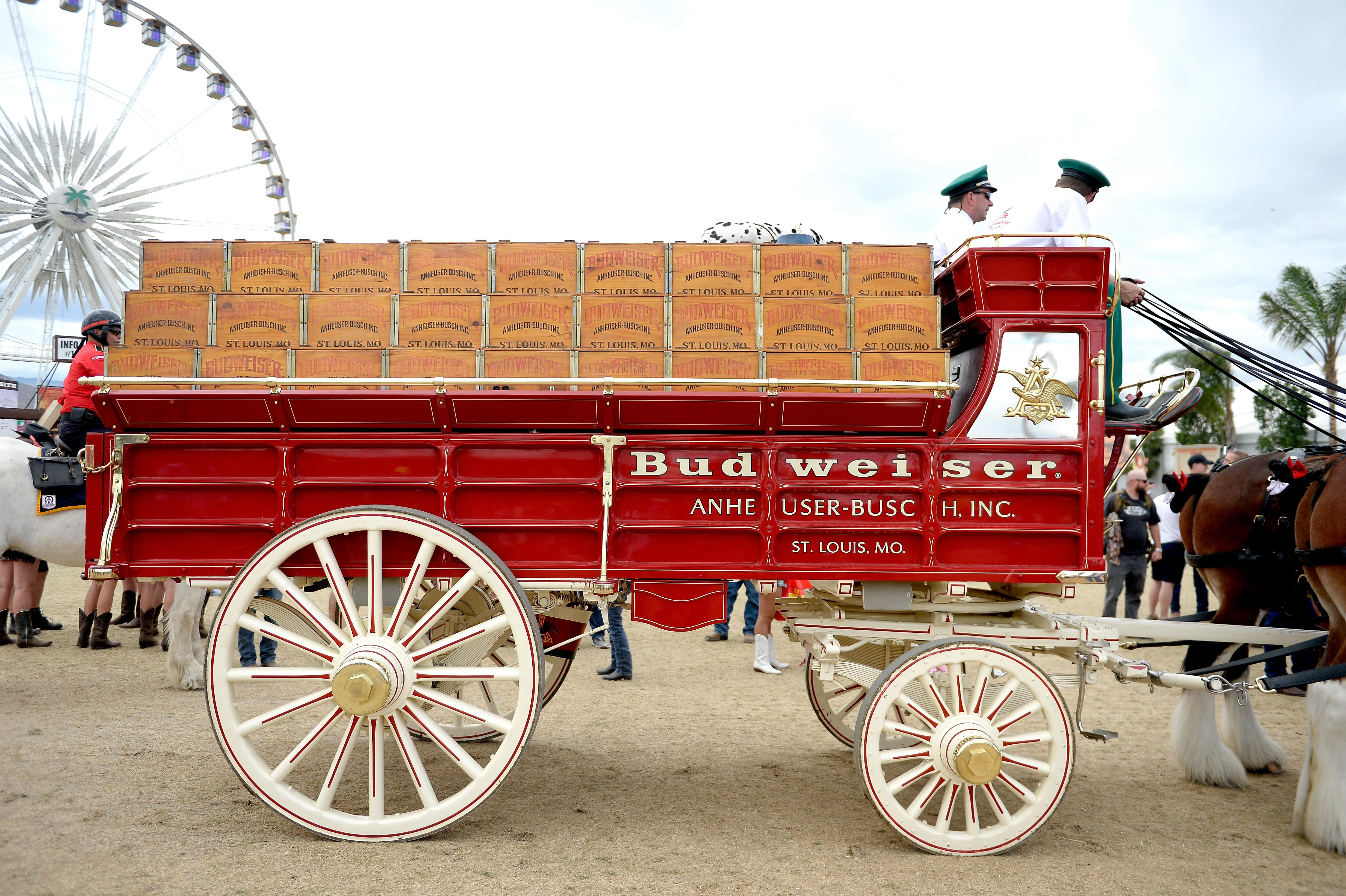 Budweiser wagon and Clydesdale