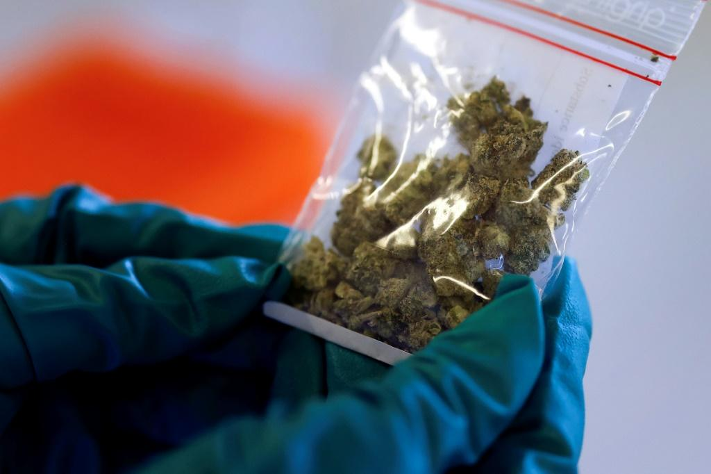 According to a survey around five percent of respondents in Norway say they have used cannabis in the last 12 months