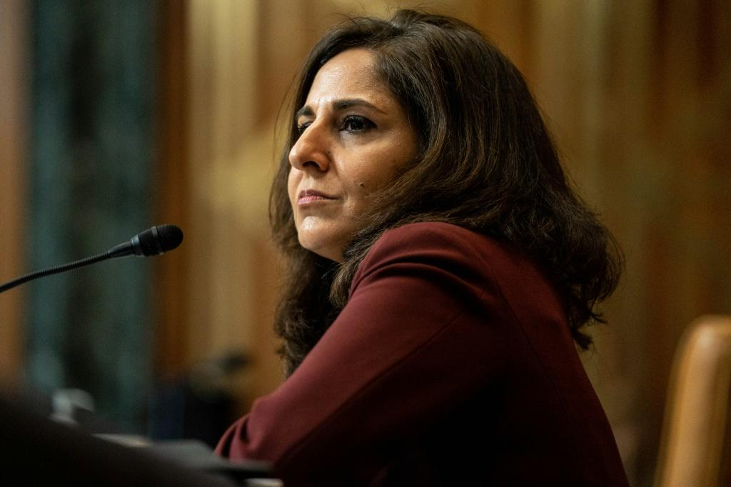 Neera Tanden, nominee for Director of the Office of Management and Budget (OMB), testifies during a Senate Committee on the Budget hearing on Capitol Hill in Washington, DC on February 10, 2021