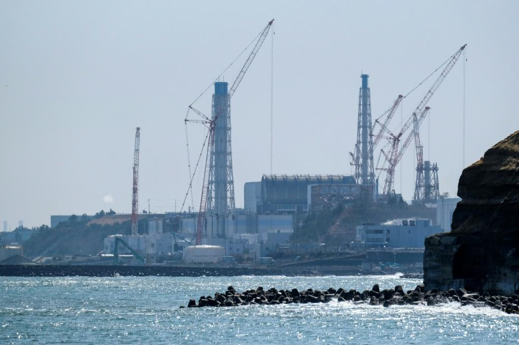 The nuclear meltdown at the Fukushima Daiichi nuclear plant blanketed nearby areas with radiation