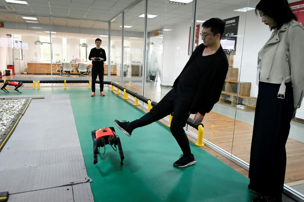 With four metal legs, it is more stable than a real dog