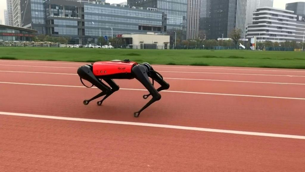 It's whip fast, obeys commands and doesn't leave unpleasant surprises on the floor -- meet the AlphaDog, a robotic response to two of China's burgeoning loves: pets and technology. The high-tech hound uses sensors and Artificial Intelligence (AI) technol