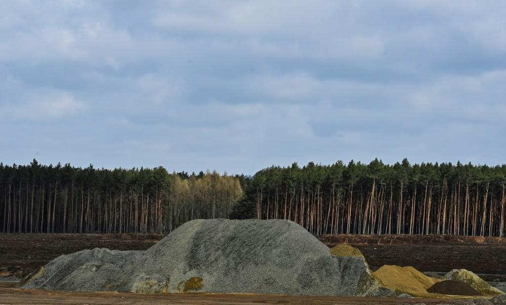 Huge swathes of forest have been cut down to make way for the factory