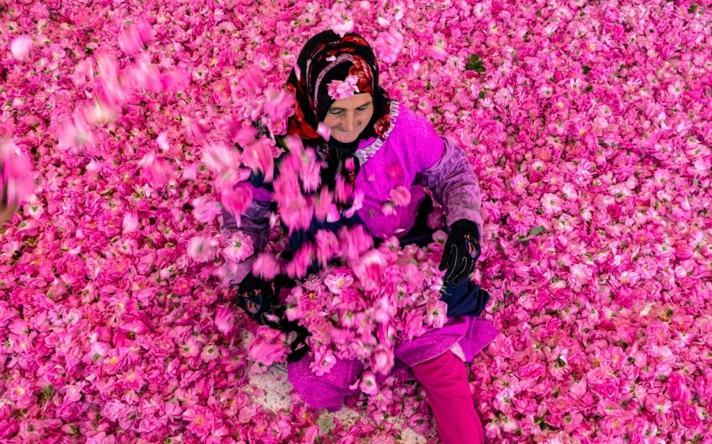 In Morocco's Kelaat Mgouna in the Atlas Mountains, roses are a key industry, and its annual festival attracted thousands of visitors before Covid-19