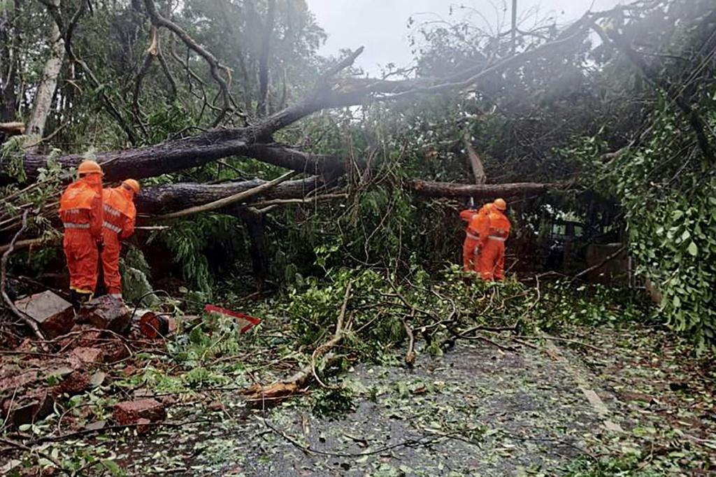National Disaster Response Force staff clear fallen trees from a road following severe cyclonic storm 'Tauktae' at Margao in Goa