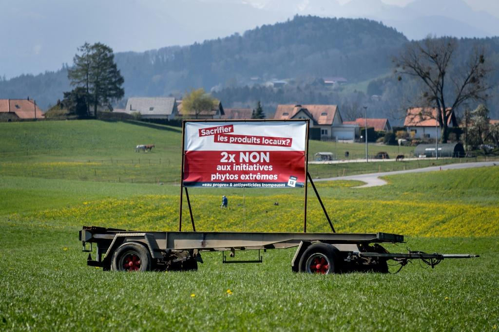 Under Switzerland's direct democracy system, referendums and popular votes occur every few months at national, regional and local levels