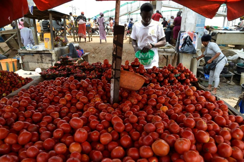 Food prices in Nigeria rose by more than 22 percent in May compared with a year earlier -- poor households have been hit hard