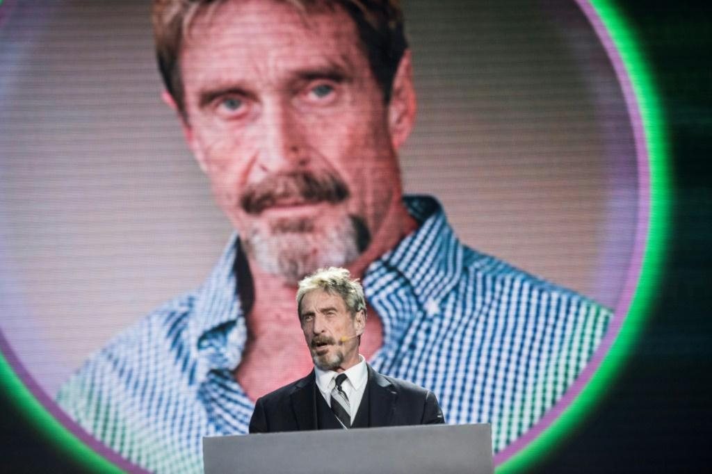 The US government said McAfee had failed to pay tax on 10 million euros of earnings