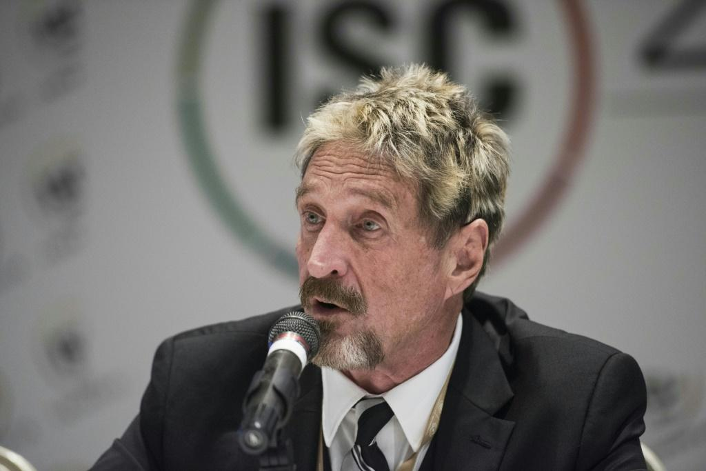 John McAfee was accused by a US court of failing to pay tax on 10 million euros of earnings