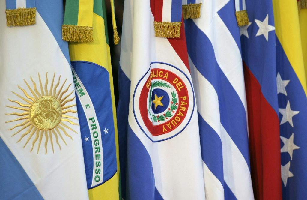 The flags of the Mercosur trade bloc member countries were displayed at the XLIII Mercosur presidential summit in Mendoza, Argentina in 2012