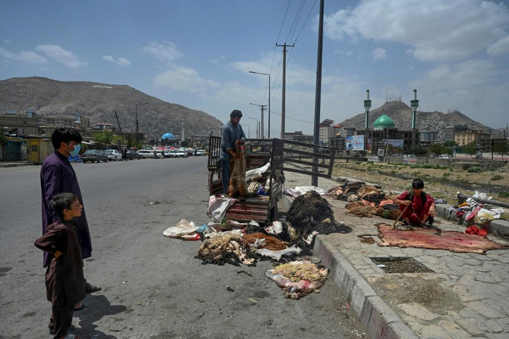 A man unloads cattle skins from a vehicle to be sold at a market area in Kabul on July 21, 2021, as the country marks Eid al-Adha